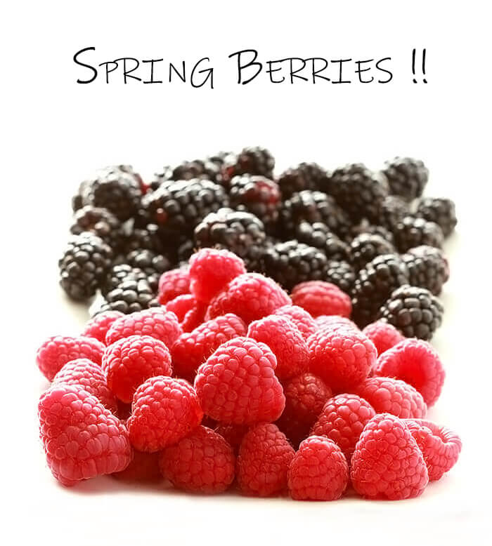 Fresh Spring Raspberries and Blackberries on a White Tabletop
