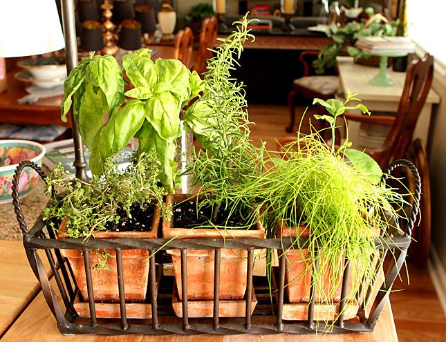 chopped-salad-herbs