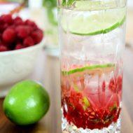 Raspberry Vodka Mojito